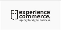 Experience Commerce_1